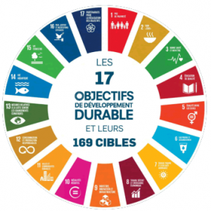 Objectifs de developpement durable (ODD)