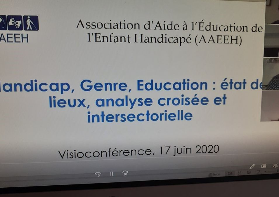Handicap, genre, éducation/2: une analyse intersectorielle