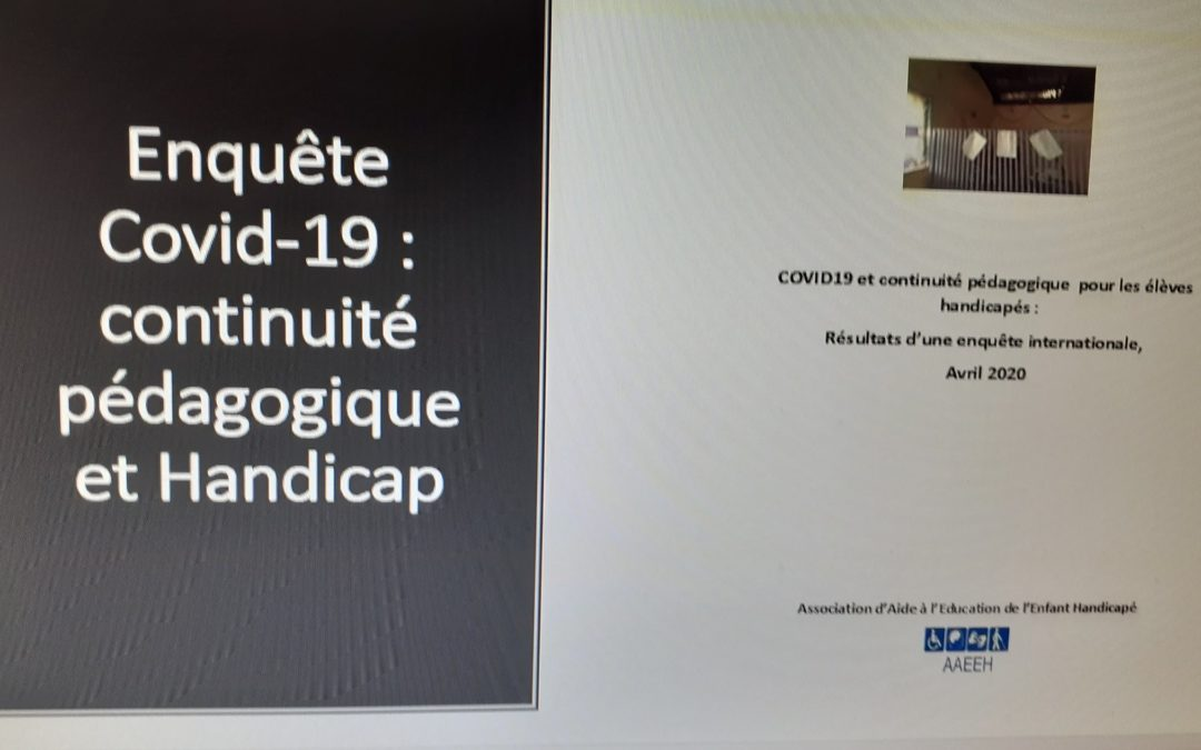 Rapport de l'enquête Covid19: continuité pédagogique et Handicap